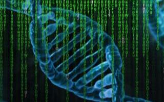 研究人员已经使用机器学习来开发血液测试