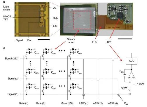 日本厂商JDI进攻图像传感器业务,借助新业务走出面前困境局面