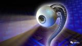 """""""人造眼""""把大量纳米级光传感器整合到半球形视网膜状组件中,"""