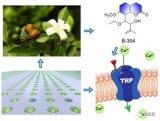 研究团队合作开发了一项精准单细胞微流控技术