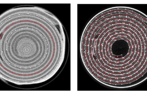 科学家研究出一种可追踪锂电池微观工作过程的方法