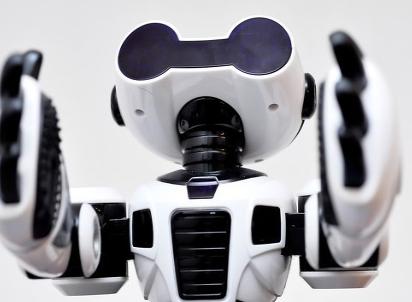 """韩国首家机器人服务咖啡厅开业,真正做到了""""无接触..."""