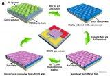 復旦大學在新型氣敏材料及MEMS氣敏器件研究中取得新進展