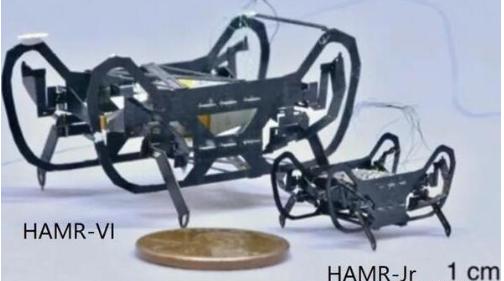 HAMR-JR微型机器人世上速度最快的机器人