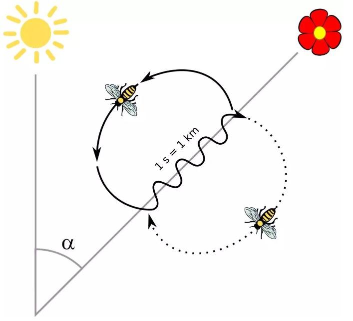 智能家居常用协议之zigbee协议的简介