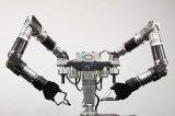 了解一下什么是神经网络AI及其应用