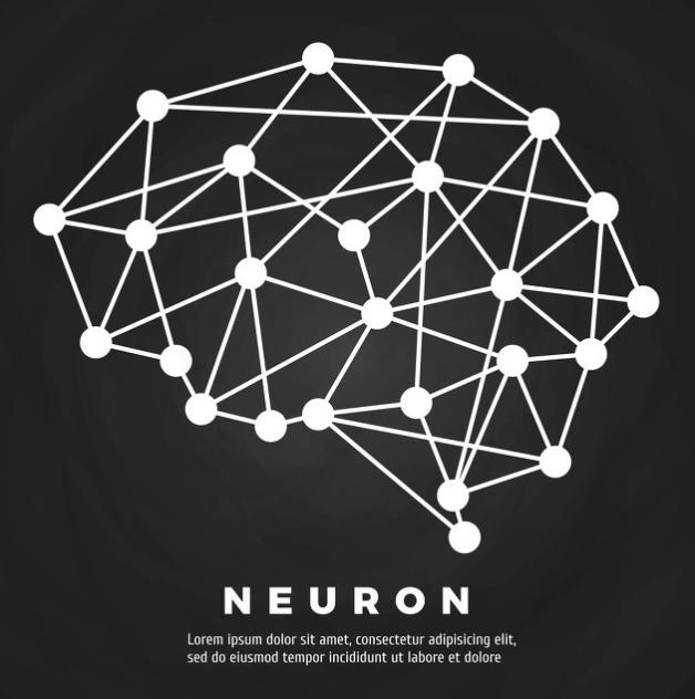 神经网络生成三维图像,以色列研发显微镜可观察活细胞