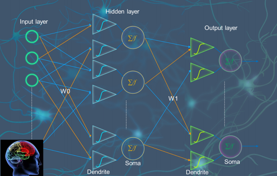 研究人员研制出人工树突器件,构建新型新神经网络