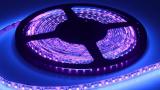 当国际照明品牌增加传统UVC灯管产品线时, UVC LED该何去何从?
