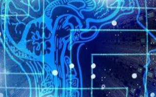 """研究人员正在研究什么是AI具有""""头脑""""的证据"""