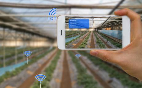智能温室控制系统助力智慧农业领域,振兴农村经济