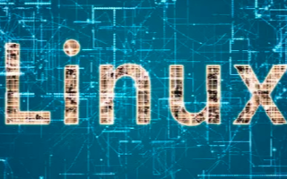 Linux创建者说,我不再编写任何代码