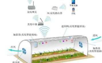 温室大棚智能管理系统下的蔬菜种植管理更高效