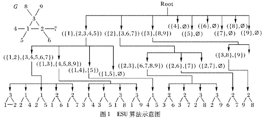 如何利用生物复杂网络motif发现的并行算法