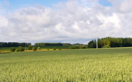 智慧农业物联网温室大棚智能控制系统实现脱贫致富