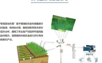 智能温室大棚控制系统是如何节省人力和种植成本