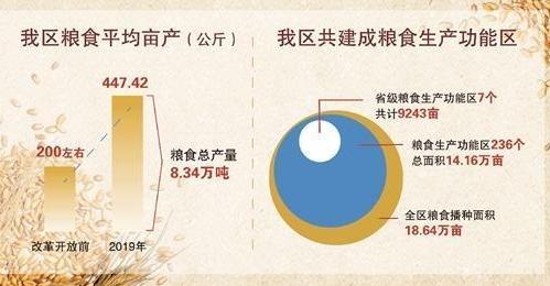 无人机在水稻种植和粮食生产中的应用