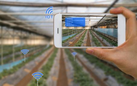 智慧农业物联网系统将助力农业生产力的提升