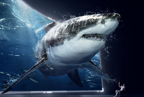 HUAWEI VR Glass解锁花式云上娱乐