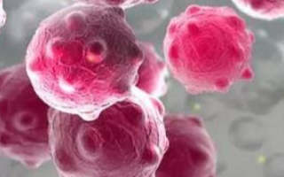 納米孔靶向測序精準檢測病毒