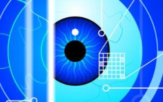 香港科技大学与美国的科学家团队共同研发胃一款3D人工眼球