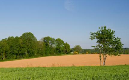 智能水肥一体化技术是浇水和施肥融为一体的农业新技术