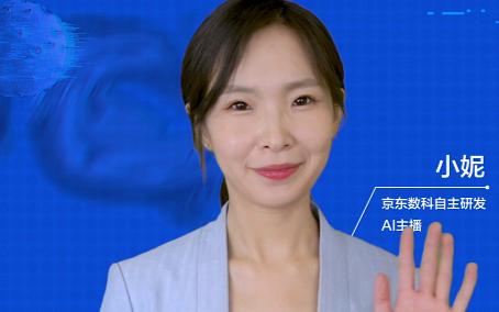 京东数科推出AI虚拟数字人 可应用于招募、客服等...