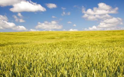 農用小型氣象站可幫助農民第一時間了解到天氣的變化