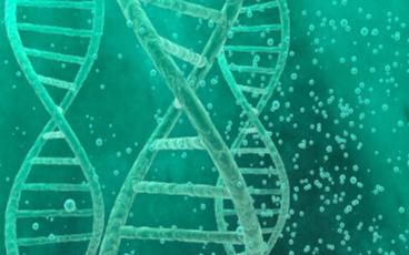 DNA存储技术又有新突破
