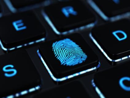 天马推出全球首款LCD屏内多点指纹解决方案