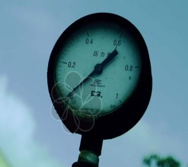 接线正确仪表在运行时仪表上排数码管显示的温度与实...