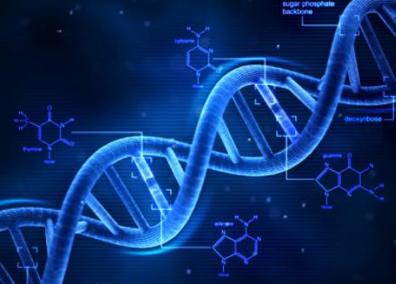 哥倫比亞大學開發便攜式DNA裝置,可快速檢測有害生物和病原體
