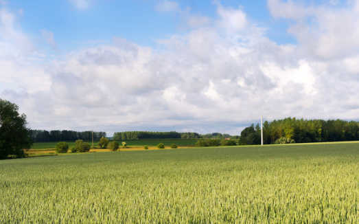 智能温室大棚控制系统给农业种植带来了哪些方面的变化