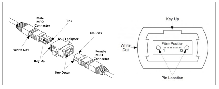 MPO光纤连接器/光纤跳线:满足400G的高速传...