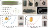 我国学者发现二维结构无机半导体单晶的超常塑性