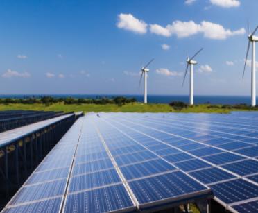 为发展绿色能源建设光伏电站,韩国砍光232万棵树...