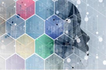 广州移动和中兴通讯开启网络结构优化AI时代