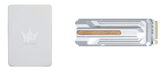 新手应如何选择SSD、HDD和SSHD?