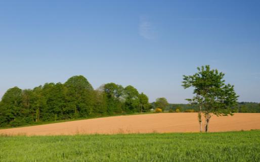 风速传感器在智慧农业气象环境中有着怎样的应用