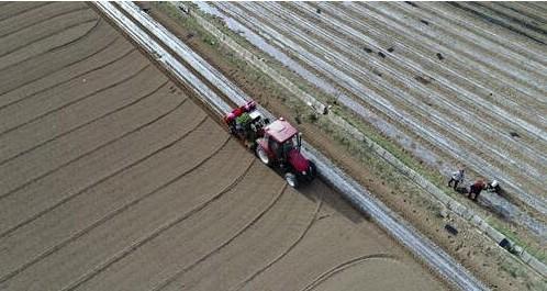 """""""智慧麦作技术""""如何赋能农业无人化生产?"""