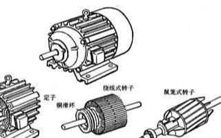 如何知道在感应电动机转子导条数?