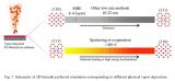 单元素二维半导体材料及应用专刊