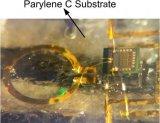 利用无线传感器节点和生物医学设备的完全植入式射频发射器芯片