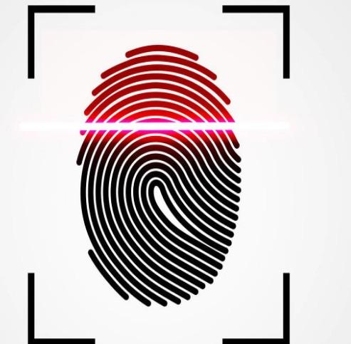 LCD屏幕或将搭载屏下指纹识别技术?