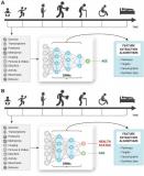 醫療人工智能公司Deep Longevity Inc研發衰老時鐘計算你的壽命