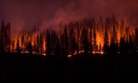 PG&E公司利用人工智能技術套件檢測識別火災區域