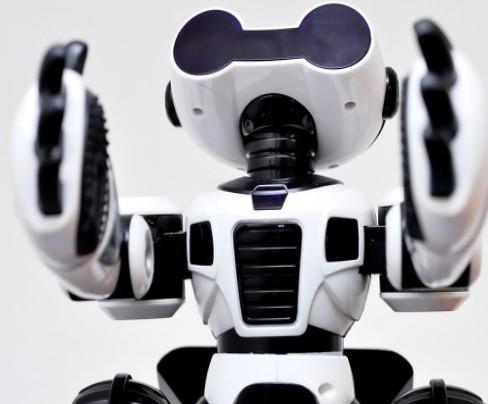 數家機器人企業紛紛發布上半年財報,頭部企業有望利穩量增