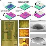 硅納米膜光電探測器(Si-NM PD)的工作原理