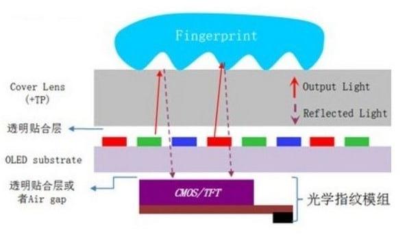 """天马微电子发布LCD指纹识别方案,LCD还能否回到当初的""""黄金时代""""?"""