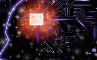 人类和AI未来或将融为一体